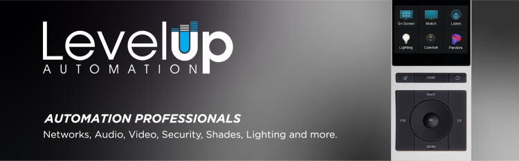 Level Up logo with header